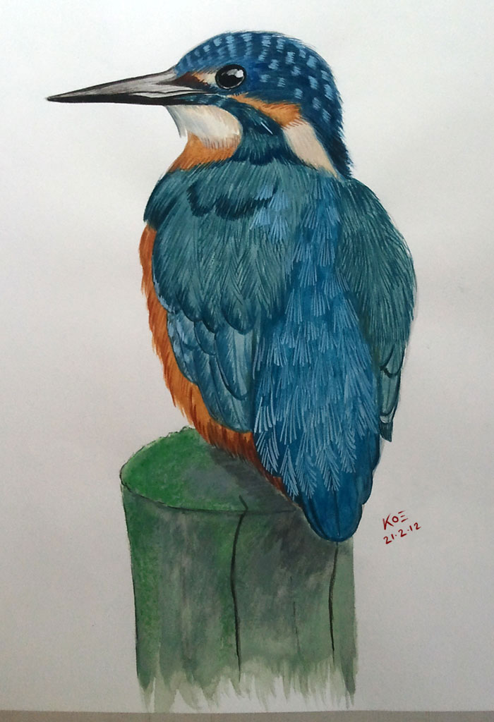 Kingfisher (Watercolor Painting)